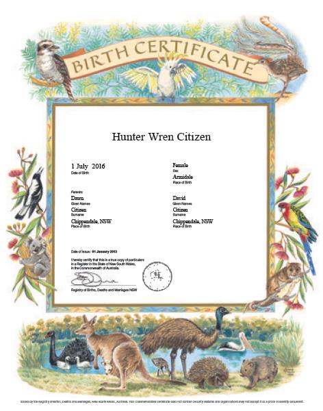 Commemorative Birth Certificate Designs Nsw Government
