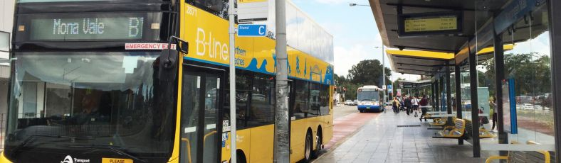 Northern-Beaches-B-Line