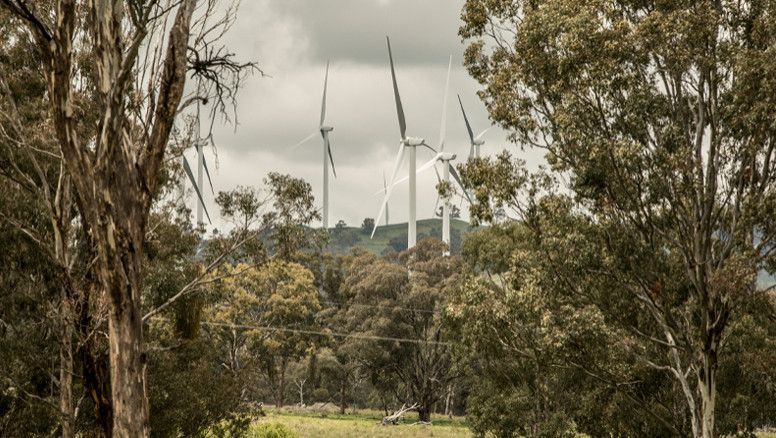 Windmills at Glenn Innes