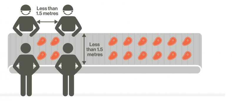 Diagram showing workers less than 1.5 metres apart
