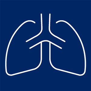 Decorative image of a set of lungs